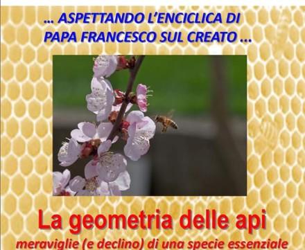 """Relazione """"La geometria delle api"""" presentata dal Dott. Mario Franzini"""